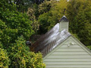 Moss Roof Treatment